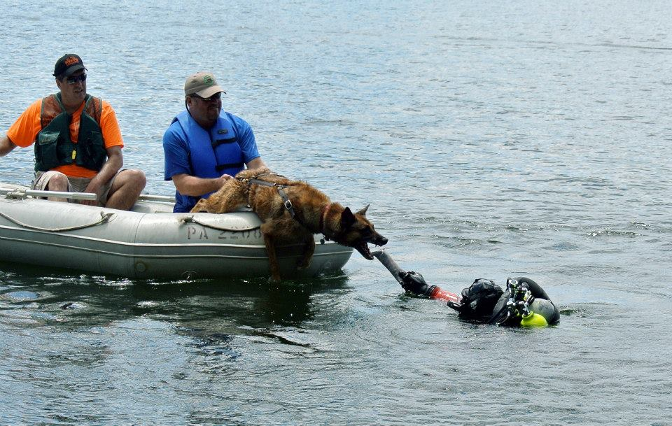 Dog Water Rescue Training