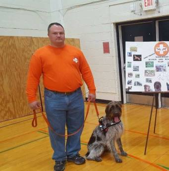 search dog wired haired griffon binghamton ny
