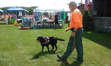 K9 Delta amigo sar lab dog training binghamton ny