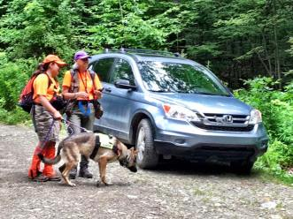 dog trainers search binghamton ny sar dogs.jpg